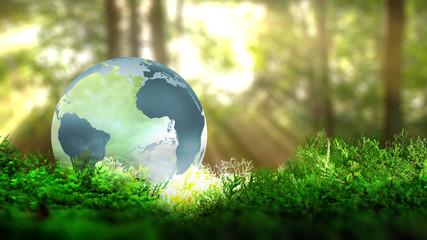 Globe terrestre sur de la végétation en foret. Concept écologique. Rendu 3D.