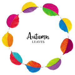 Colorful leaves vector wreath