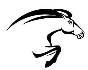 speeding mustang horse head - black and white vector design