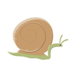 funny cartoon snail