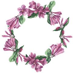floral frame, watercolor weigela flower