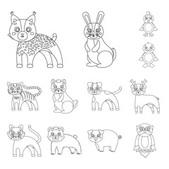 Toy animals outline icons in set collection for design. Bird, predator and herbivore vector symbol stock web illustration.