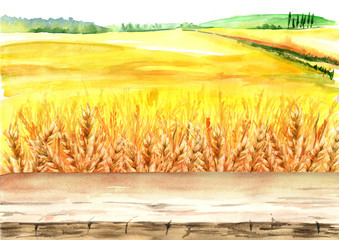 Summer rural landscape. Wheat field with blank board. Watercolor hand drawn illustration, background for your design