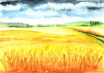 Papiers peints Jaune Summer rural landscape. Wheat field. Watercolor hand drawn illustration, background