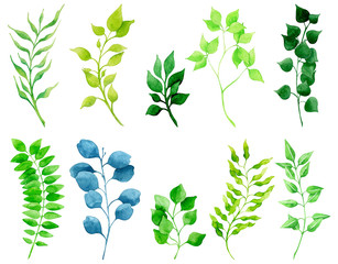 Bright watercolor set of green plants and leaves.