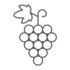 Grapes thin line icon, fruit and vitamin, vine sign, vector graphics, a linear pattern on a white background, eps 10.