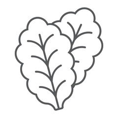 Leaf Lettuce thin line icon, vegetable and diet, vegetarian sign, vector graphics, a linear pattern on a white background, eps 10.