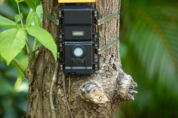 wildlife camera is mounted to catch the next suspect