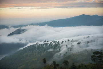 Beautiful foggy scenery of Doi Ang Khang, Chiang Mai, Thailand