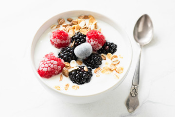 Yogurt with berries and oat flakes in a bowl. Closeup view. Healthy eating, healthy lifestyle concept