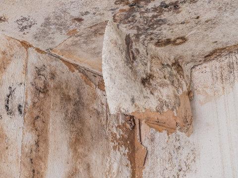 Feuchte Wände nach Wasserschaden