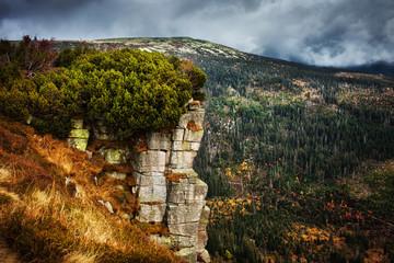 Fototapeta Krkonose Mountains Landscape in Czechia obraz