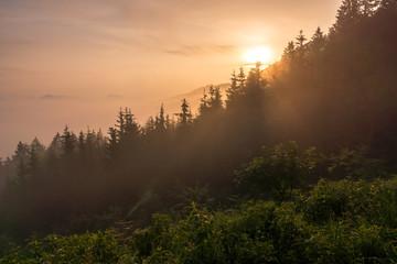 Foggy morning in Alps near Skofja Loka, Slovenia
