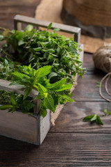 Mixed summer fresh herbs on rustic wooden background, copy space