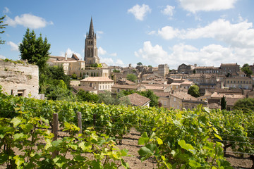 landscape view of Saint Emilion village in Bordeaux region in France