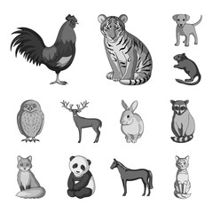 Realistic animals monochrome icons in set collection for design. Wild and domestic animals vector symbol stock web illustration.