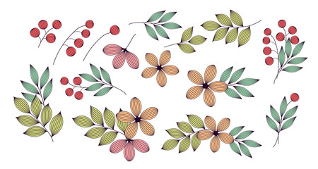 Colorful elegant leaves and flowers with veins floral elements set, vector
