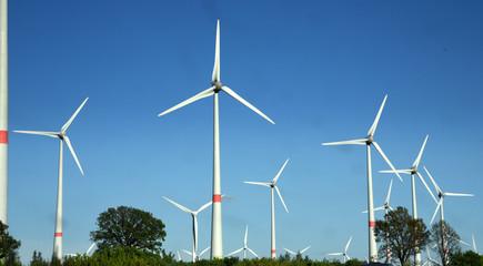 Dreiblättrige, weiße Windräder in der Lausitz vor strahlend blauem Himmel