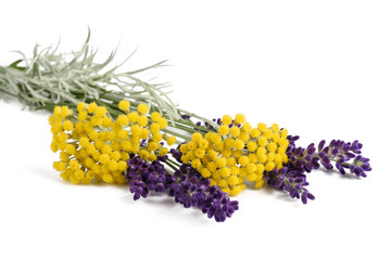 lavender and helichrysum