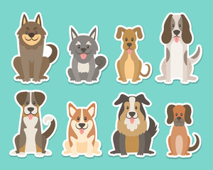 Sticker collection of different kinds of dogs. Sat dogs in front view position. Corgi, sheepdog, settle, terrier. Vector illustration.