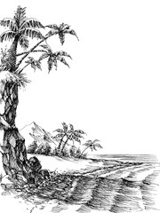 Beach and sea view, palm trees on shore