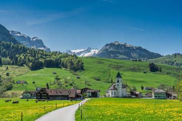 Swiss, Appenzell, Weissbad valley view