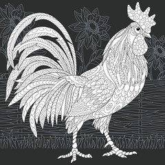 Rooster in black and white line art style. Coloring page.