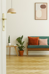 Plant between table and green sofa in bright living room interior with poster and lamp. Real photo