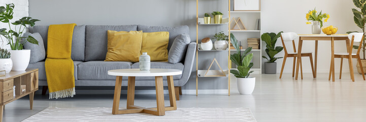 Real photo of a grey sofa with yellow pillows standing behind a table and next to a shelf with ornaments in living room interior with table and chairs in the bacground