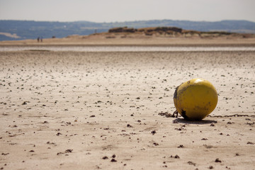 A buoy with a chain attached, on a beach at low tide.