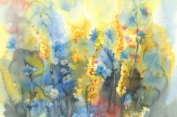 sunny meadow flowers watercolor background