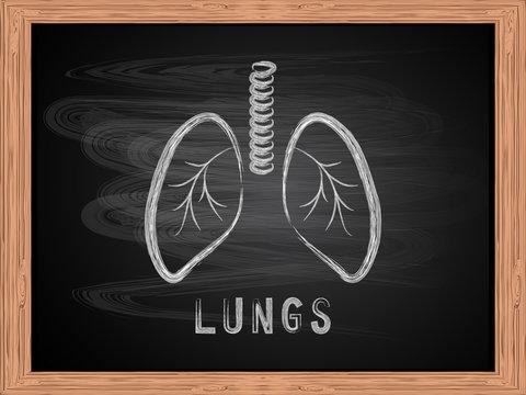 Lungs  icon on blackboard flat design vector Illustration.
