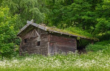 Alte Hütte im Ultental, Südtirol