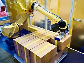 Standard multipurpose robot