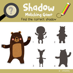 Shadow matching game of Standing Bear raising two hands animals for preschool kids activity worksheet colorful version. Vector Illustration.