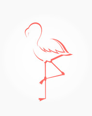 Flamingo shape illustration