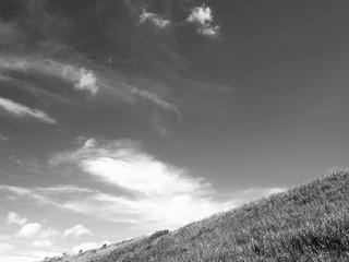 初夏の大空
