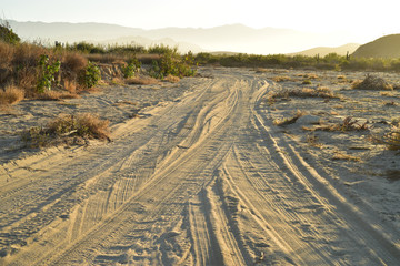 morning on sand beach road to ocean beach in Baja, Mexico