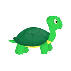 Turtle animal ocean green nature wildlife sea underwater reptile character vector illustration.