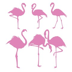 vector file of flamingo