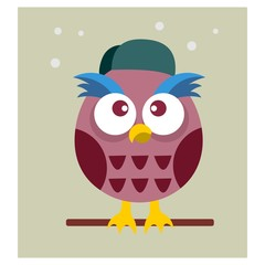 cute little owl birds mascot cartoon character