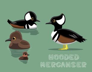 Hooded Merganser Duck Cartoon Vector Illustration