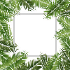 Vector summer poster framed with green palm leaves on white background.