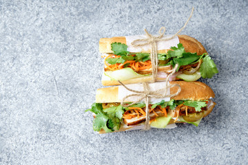 Classical banh-mi sandwich with sliced grilled pork tenderloin, shredded carrots and peeled cucumbers, jalapeno peppers and cilantro. Top view, copy space