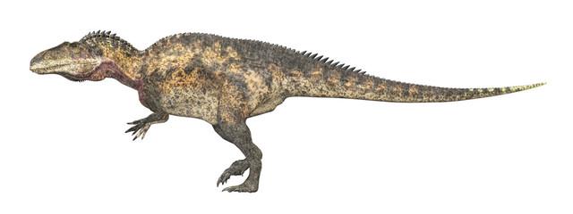 Dinosaurier Acrocanthosaurus, Freisteller