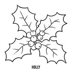 Coloring book, Holly branch