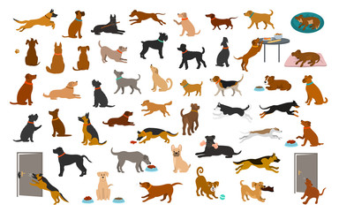 different dog breeds and mixed set, pets play running jumping eating sleeping, sit lay down and walk, steal food, bark, protect. isolated  cartoon vector illustration graphic