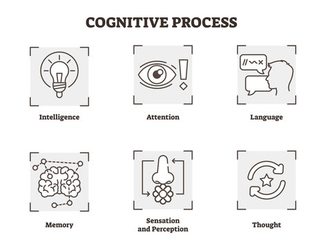 Vector illustration set of cognitive process. Scheme with intelligence, attention, memory, sensation and perception types. Psychology basics icon collection.