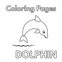 Cartoon Dolphin Coloring Book