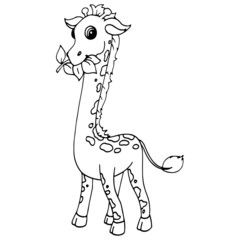Giraffe cartoon illustration isolated on white background for children color book